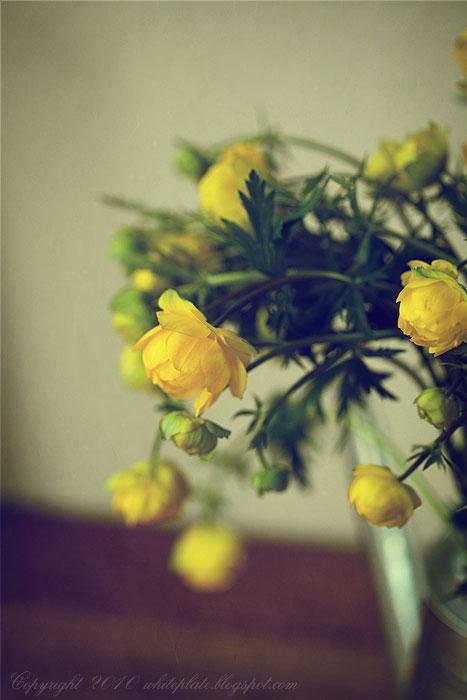 rp_flowers_1982.jpg