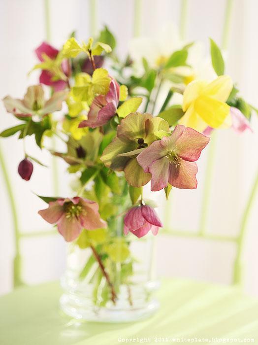 rp_flowers_0521.jpg
