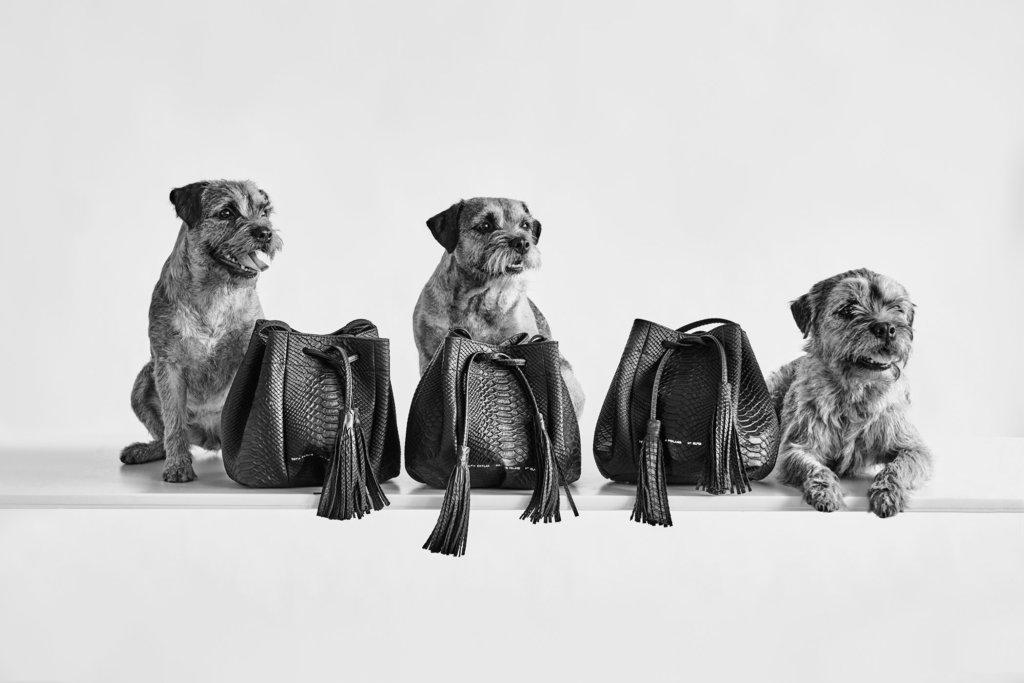 chylak-bags-2016-10